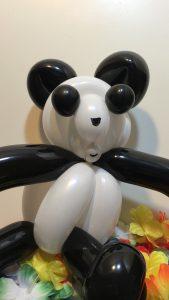 Le bébé panda